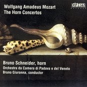 Concerto for Horn & Orchestra in E-flat Major, K.417: Allegro Song