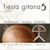 5 Indalo, Bulerias, Tangos, Rumbas, Fandangos Songs