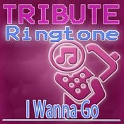 I Wanna Go (Britney Spears Tribute) - Ringtone Songs
