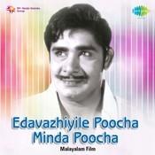 Vivaahanaalil Povanippanthal Song