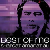 Best Of Me Shafqat Amanat Ali Songs