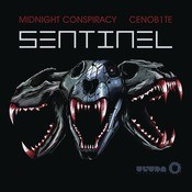 Sentinel  Song