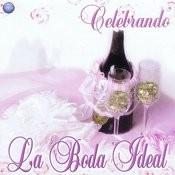 Celebrando La Boda Ideal Songs