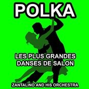 Les Plus Grandes Danses De Salon: Polka Songs