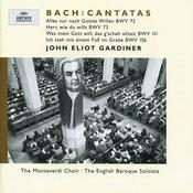J.S. Bach: Cantatas BWV 72; 73; 111; 156 Songs