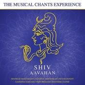 Shiv Tandav Stotra Song