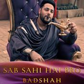 Sab Sahi Hai Bro Song