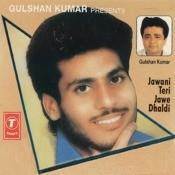 Jawani Teri Jawe Dhaldi Songs