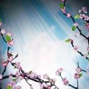 Life In Glory - 10 Gospel Greats Volume 2 Songs