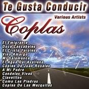 Te Gusta Conducir Coplas Songs