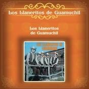 Los Llaneritos De Guamuchil Songs