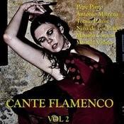 Cante Flamenco Vol.2 Songs