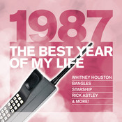 The Best Year Of My Life: 1987 Songs