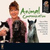 Animal Communication Songs