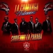 dbbe0452964 Subiendo La Parada Songs Download  Subiendo La Parada MP3 Songs ...
