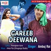 Dil Hamar Pagal Rahe Song