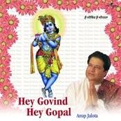 Hey Govind Hey Gopal Songs