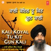 Kali Koyal Too Kitt Gunn Kali Songs