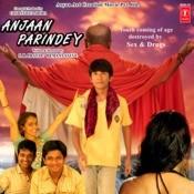 Anjaan Parindey Songs