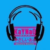 Yasasioto Electroremix Songs