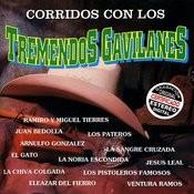 Corridos Con Los Tremendos Gavilanes Songs