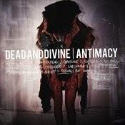 Antimacy Songs
