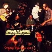 Organic Hip Hop, Vol. 1 - Ep Songs