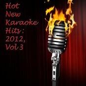 Hot New Karaoke Hits: 2012, Volume 3 Songs