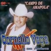 Campo De Amapola Songs