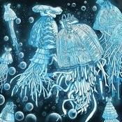 Jellyfish Dress Songs