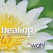 Healing: A Vibrational Exchange Songs