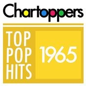 Top Pop Hits Of 1965 Songs