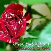 Boccuccia Di Rosa Songs