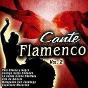 Cante Flamenco Vol. 2 Songs