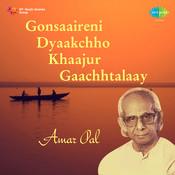 Gonsaaireni Dyaakchho Khaajur Gaachhtalaay Songs