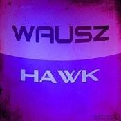 Hawk Songs