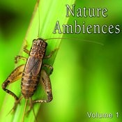 Nature Ambiences, Vol. 1 Songs