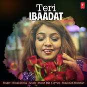 Teri Ibaadat Song