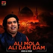 Ali Mola Ali Dam Dam Mp3 Song Download Ali Mola Ali Dam Dam Single Ali Mola Ali Dam Dam Song By Ahad Ali Khan On Gaana Com