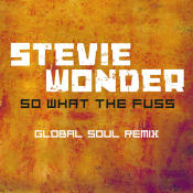 So What The Fuss-Global Soul Remix Songs