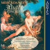 Concerto For Flute And Orchestra In E Minor Op. 57: I. Allegro Maestoso Song