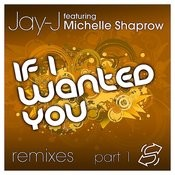 If I Wanted You (Emil Lanne Drumtrack) [Feat. Michelle Shaprow] (Emil Lanne Drumtrack) Song