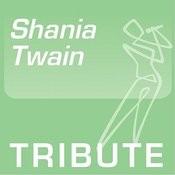 Tribute To: Shania Twain, Vol. 2 Songs