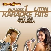 Ni Contigo Ni Sin Ti (As Made Famous By Pimpinela) [Karaoke Version] Song
