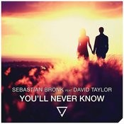You'll Never Know (Feat. David Taylor)[Radio Edit] Song