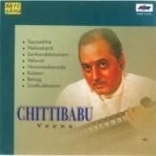 Chittibabu Swararaga Sudha Veena Songs
