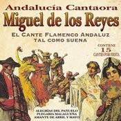 Andalucía Cantaora. El Cante Flamenco Andaluz Tal Como Suena Songs