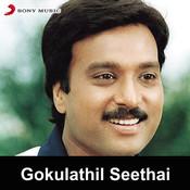 Gokulathil Seethai Songs