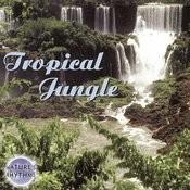 Tropical Jungle Songs