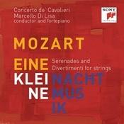 Eine Kleine Nachtmusik - Complete Divertimentos For Strings Songs